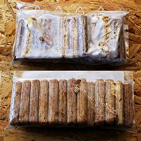 Austernpilze_zuechten_Holz_Impfduebel_Austernseitling_Myzel_kaufen_Die_Pilzmanufaktur