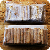 Shiitake_Duebel_kaufen_Pilze_selber_zuechten_Shiitake_Impfduebel_Die_Pilzmanufaktur