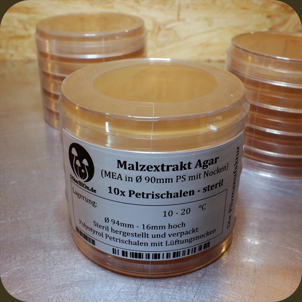 MEA Malzextrakt Agar Petrischalen frisch /& steril Pilzzucht