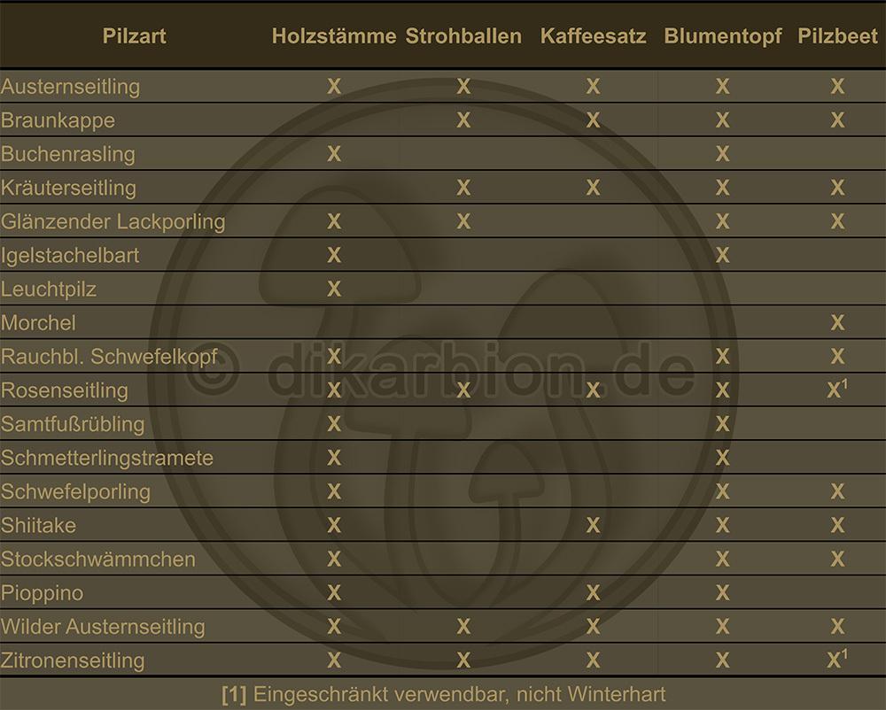 Top Anleitung • Pilze selber züchten im • Haus und Garten • DikarBIOn &RN_06
